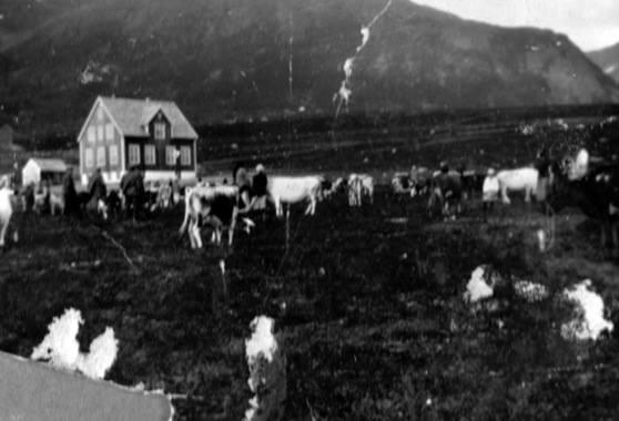 oksfjord men Hytta har innlagt strøm, men ikke vann  the nice looking house is located nearby the oksfjord in a friendly and helpfull neighbourhood inside the house it`s .
